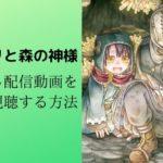 ソマリと森の神様の見逃し配信動画を無料視聴する方法をご紹介!!